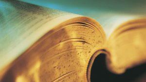 Теория на превода е наука, която изучава процеса на предаване на съобщение от един език на друг език